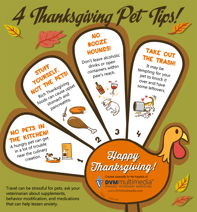 thanksgiving-safety-tips