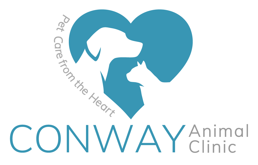 Conway Animal Clinic